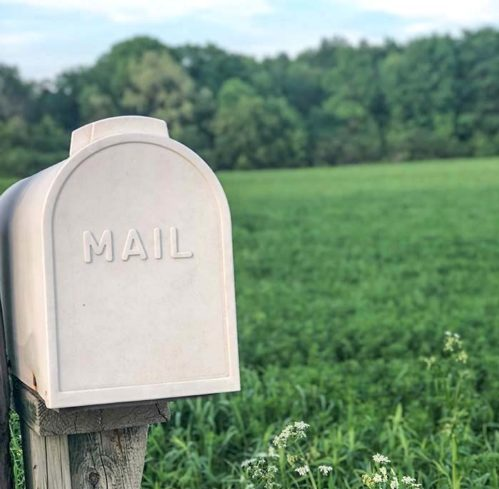 mailbox with green landscape in background